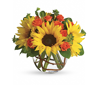 Sunny Sunflowers in Spartanburg SC, A-Arrangement Florist