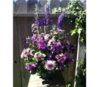 Purple Passion  in Arcata CA, Country Living Florist & Fine Gifts