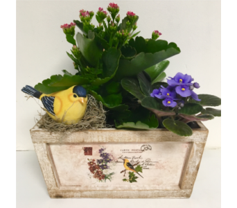 Gold Finch Keepsake Bird and Planter in Wyoming MI, Wyoming Stuyvesant Floral