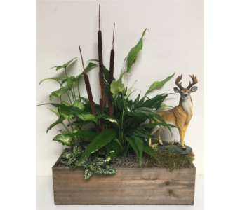 Keepsake Deer in Living Planter in Wyoming MI, Wyoming Stuyvesant Floral