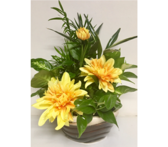 Two-Tone Ceramic with Green Plants and Yellow Silk in Wyoming MI, Wyoming Stuyvesant Floral