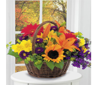 Basket of Blooms in Indianapolis IN, George Thomas Florist