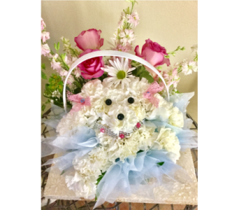 Puppy Love in Vero Beach FL, Artistic First Florist