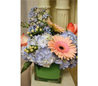 Bay Breeze in Nashville TN, Emma's Flowers & Gifts, Inc.