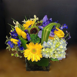 Black Velvet in Nashville TN, Emma's Flowers & Gifts, Inc.