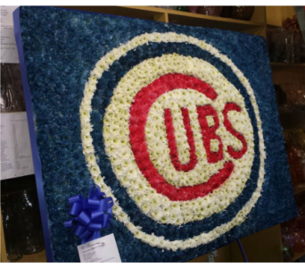 Cubs in Staten Island NY, Kitty's and Family Florist Inc.