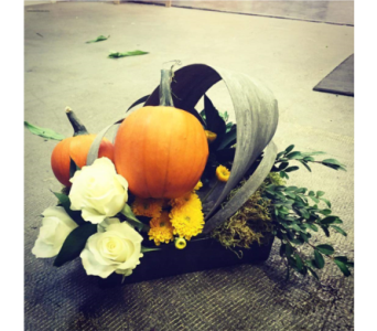 Modern Fall- mini pumpkins 2 in Swift Current SK, Smart Flowers
