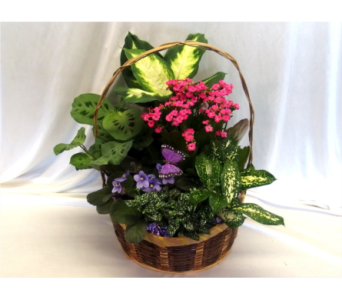 Blooming Garden Basket in Hollidaysburg PA, Warner's Florist Gifts & Greenhouse