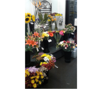 Our Store in Moncton NB, Macarthur's Flower Shop