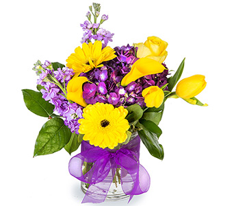 Brilliant Blooms in Fort Worth TX, Greenwood Florist & Gifts