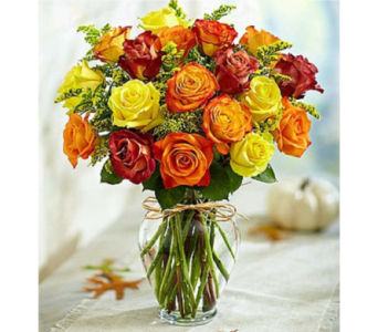 Rose Elegance Premium Autumn Roses in Huntington WV, Archer's Flowers and Gallery