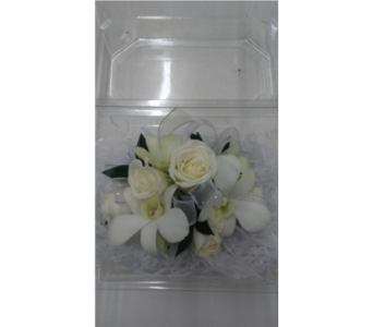 Orchids & Roses in Purcellville VA, Purcellville Florist