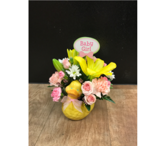 Bathtime Buddy in Fargo ND, Dalbol Flowers & Gifts, Inc.