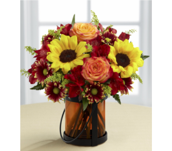 The Giving Thanks Bouquet by Better Homes & Garden in Chicago IL, Yera's Lake View Florist