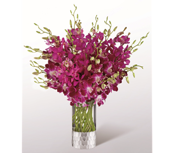 The Orchid Bouquet by Vera Wang in Chicago IL, Yera's Lake View Florist