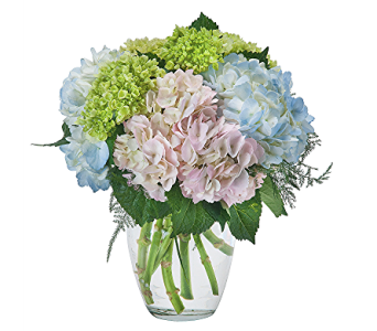 Holyoke Irish Spirit Flowers   in South Hadley MA, Carey's Flowers, Inc.