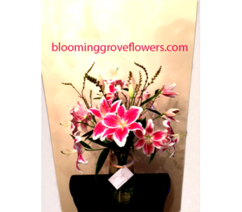GFG3203 in Buffalo Grove IL, Blooming Grove Flowers & Gifts