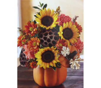 Pumpkin n' Posies in Kissimmee FL, Golden Carriage Florist