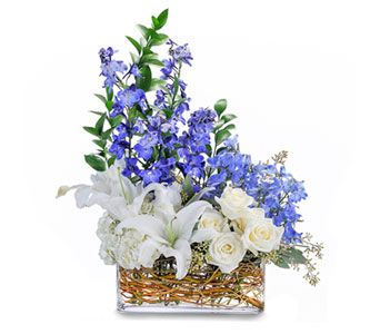 Majestic Blue in Cranston RI, Woodlawn Gardens Florist