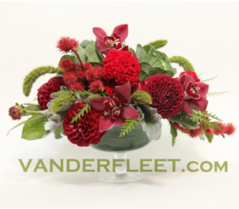 Velvet Merlot Floral Centerpiece in Etobicoke ON, VANDERFLEET Flowers
