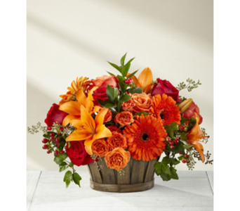 Harvest Memories  in Fairfax VA, Exotica Florist, Inc.