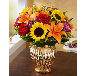 Autumn Brilliance  in Fairfax VA, Exotica Florist, Inc.