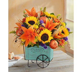 Harvest Garden  in Fairfax VA, Exotica Florist, Inc.