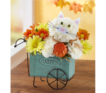 Fabulous Fall Feline in Bradenton FL, Ms. Scarlett's Flowers & Gifts