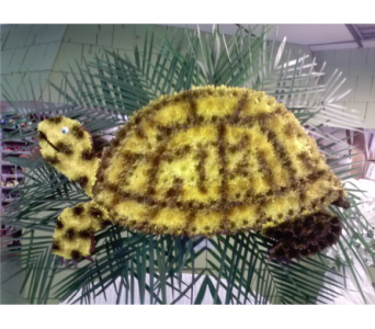 Box Turtle in Freehold NJ, Especially For You Florist & Gift Shop