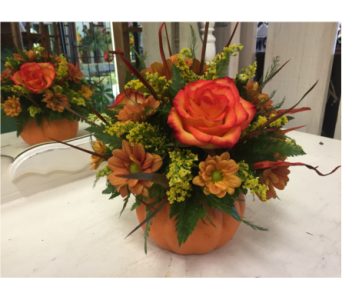 Pumpkin Spice in Arcata CA, Country Living Florist & Fine Gifts