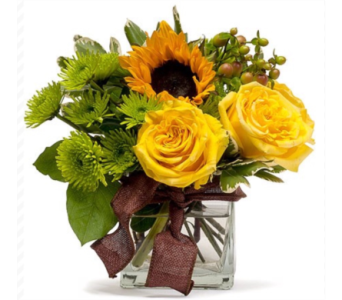 Sunshine & Smiles in Needham MA, Needham Florist