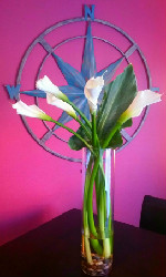 Elegant Callas in Round Rock TX, Heart & Home Flowers