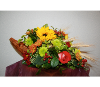 Hello Fall in Arcata CA, Country Living Florist & Fine Gifts