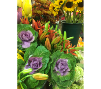 Fall Flowers in Manhasset NY, Town & Country Flowers