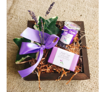 Oregon Lavender Petite Gift Set in Eugene OR, Dandelions Flowers