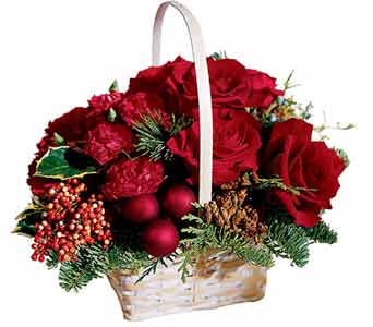 FTD Holiday Garden Basket in Cohasset MA, ExoticFlowers.biz