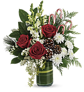 Teleflora's Festive Pines Bouquet in Dubuque IA, New White Florist