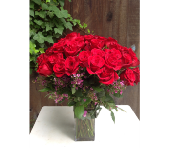Endless Love in Guilford CT, Guilford White House Florist