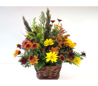 Rustic Autumn Basket in Worcester MA, Holmes Shusas Florists, Inc