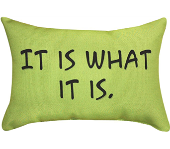 It Is What It Is Pillow in Bonita Springs FL, Heaven Scent Flowers Inc.