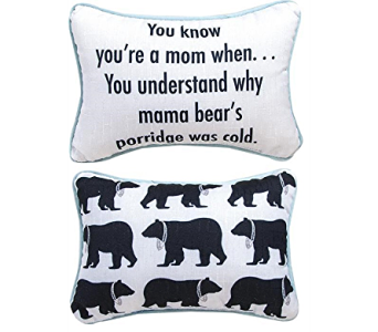 Mother Bear Pillow in Bonita Springs FL, Heaven Scent Flowers Inc.