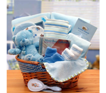 Simply The Baby Basics New Baby Gift Basket - Blue in Silver Spring MD, Bell Flowers, Inc