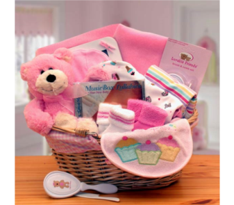 Simply The Baby Basics New Baby Gift Basket - Pink in Silver Spring MD, Bell Flowers, Inc