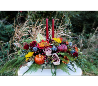Thanksgiving Centerpiece in Norman OK, Redbud Floral