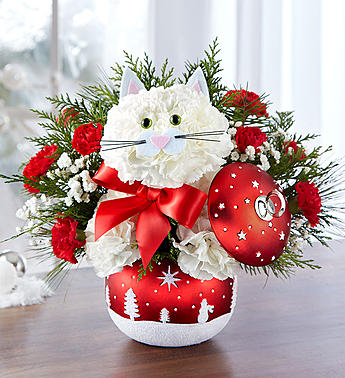 Fabulous Feline in Starry Night Ornament  in Camp Hill and Harrisburg PA, Pealers Flowers