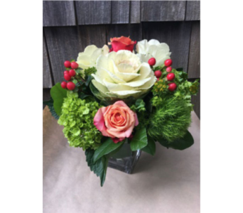 La La Land in Guilford CT, Guilford White House Florist