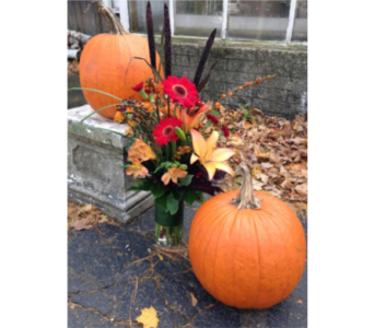 A Thanksgiving Visitor in Guilford CT, Guilford White House Florist
