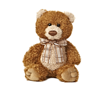 Brown Sugar Bear in Alliston, New Tecumseth ON, Bern's Flowers & Gifts