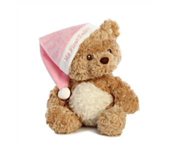 My First Teddy, Pink in Alliston, New Tecumseth ON, Bern's Flowers & Gifts