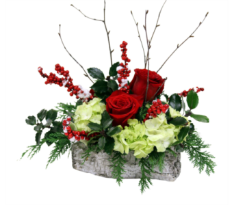 Yule Log  in Detroit and St. Clair Shores MI, Conner Park Florist